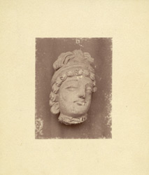Sculpture fragment: head of a Buddhist statue from Jamal-Garhi. 1003984